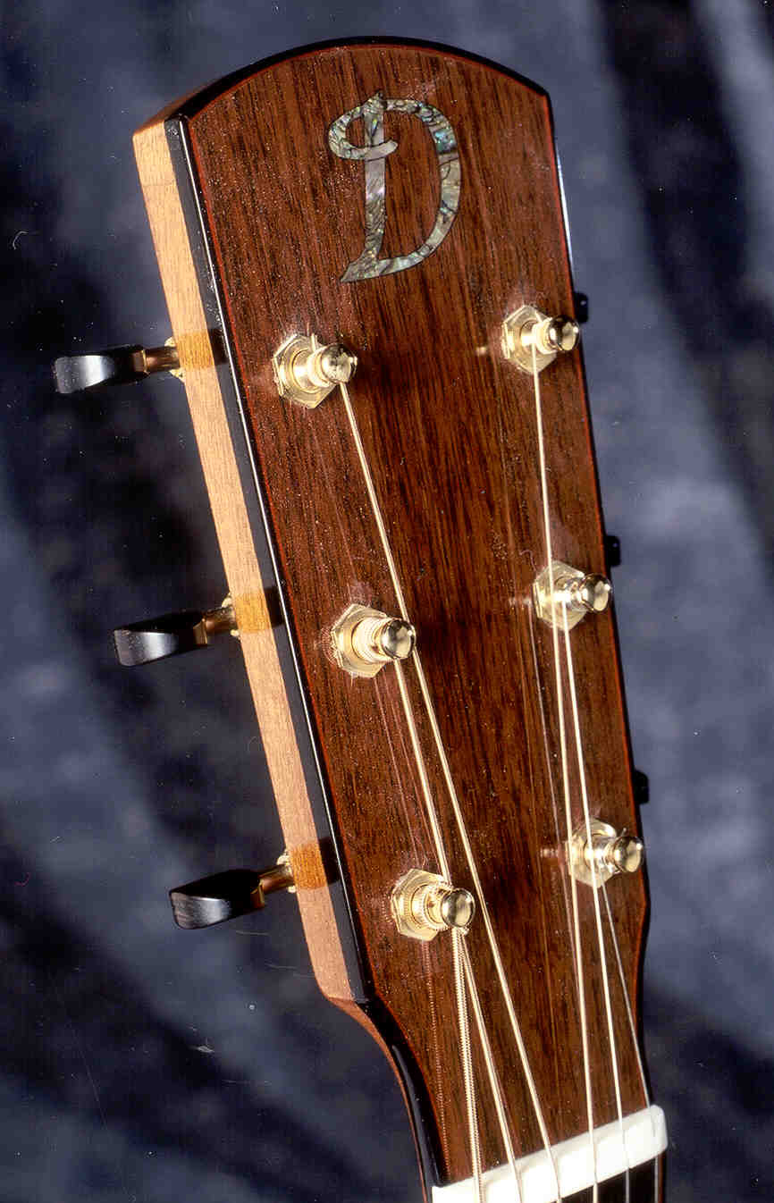 HS-Standard-Guitar-Luthier-LuthierDB-Image-5